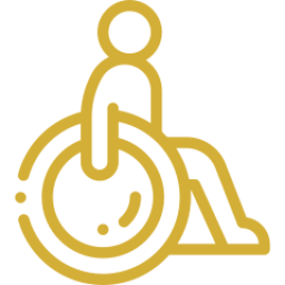 An icon depicting a person in a wheelchair.